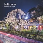 STREAM OF THE NIGHT VON BULTMANN